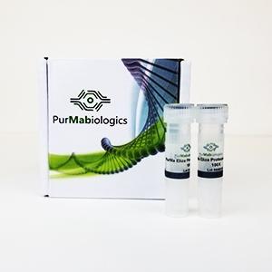 PurMa™ ELISA Protease Inhibitors